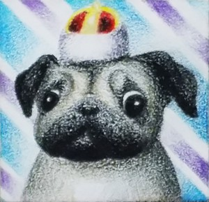 Pug, Colored Pencil