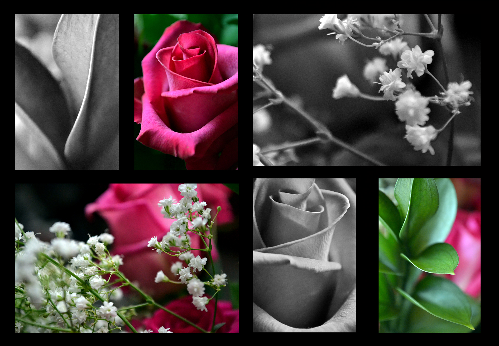 Emily Reiff A Rose Bouquet