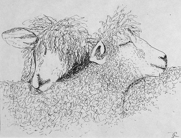 Tranquillity by Debra Chaffee - Pen & Ink on Paper