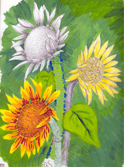 Green Sunflowers by Haley Stevens - Mixed Media