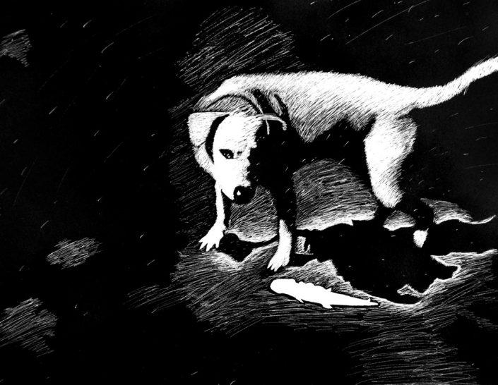 Gold Key Award: Tasmanian Devil, by Sarah Doiron - Pastel on Paper (Drawing - Mr. Unrein)